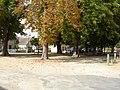 Néons-sur-Creuse (36) - Place des Marronniers.jpg