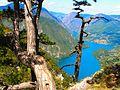 Nacionalni park Tara; Pogled na Drinu sa vidikovca Banjska stena; 01.JPG