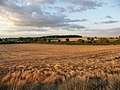 Naseby Battle Field. - geograph.org.uk - 517483.jpg