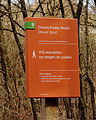 Nationaal Park Drents-Friese Wold. Locatie Dieverzand 012.JPG