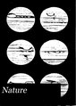 Nature (IA naturevolume17unkngoog).pdf