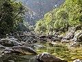 Natureza rio são francisco serra da canastra IMG 4383.jpg