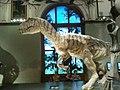 Naturhistorisches Museum - panoramio (3).jpg