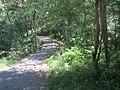 Naturreservat Nedre Timenes.jpg