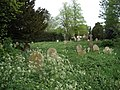 Neglected cemetery. - geograph.org.uk - 414088.jpg