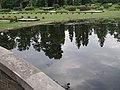 Nemours Mansion and Gardens - Wilmington DE (7654928346).jpg