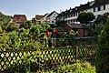 Neuhausen am Rheinfall 2010-06-24 18-17-08 ShiftN.jpg