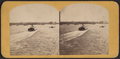 New York Harbor, from Robert N. Dennis collection of stereoscopic views.png