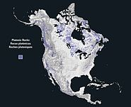North america rock plutonic
