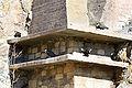 Northern Bald Ibis Exposition, Prague zoo.jpg