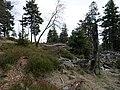 Northwest of the Altkönig 2.jpg