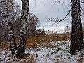 Novosibirsky District, Novosibirsk Oblast, Russia - panoramio (19).jpg