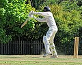 Nuthurst CC v. Henfield CC at Mannings Heath, West Sussex, England 035.jpg