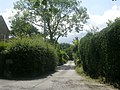 Oakdale Drive - Arthington La - geograph.org.uk - 1408531.jpg