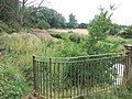 Old railings, Babingley Bridge, Castle Rising - geograph.org.uk - 1999837.jpg