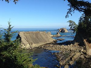 Oregon Institute of Marine Biology - Photograph of Oregon Coast near OIMB Marine Lab