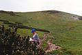 Ornak z Siwej Przeleczy, lipiec 1995.jpg