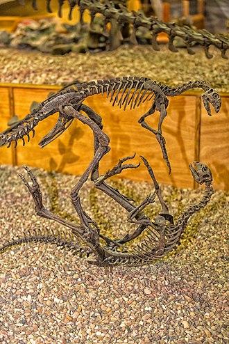 Wyoming Dinosaur Center - Image: Othnelia