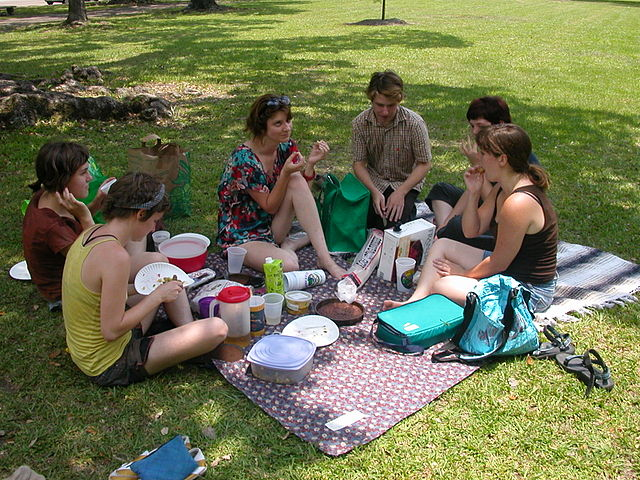 Image result for picnic