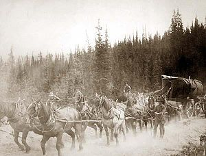 Overland Trail - Horse team on the Overland Trail