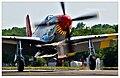 P-51C-06.jpg