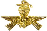 PASKAL Pin Badge.png