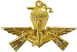 PASKAL - Official insignia of PASKAL