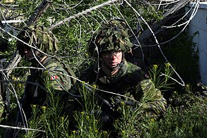 Battledress - Soldiers of the 3rd Princess Patricia Canadian Light Infantry on exercise wearing CADPAT TW.