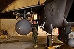 Panthers Pride of Juniper Falcon 170508-F-QP712-503.jpg