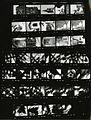 Paolo Monti - Servizio fotografico (Cesara, 1980) - BEIC 6360144.jpg