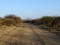 Parc national d'Awash-Ethiopie-Piste.jpg