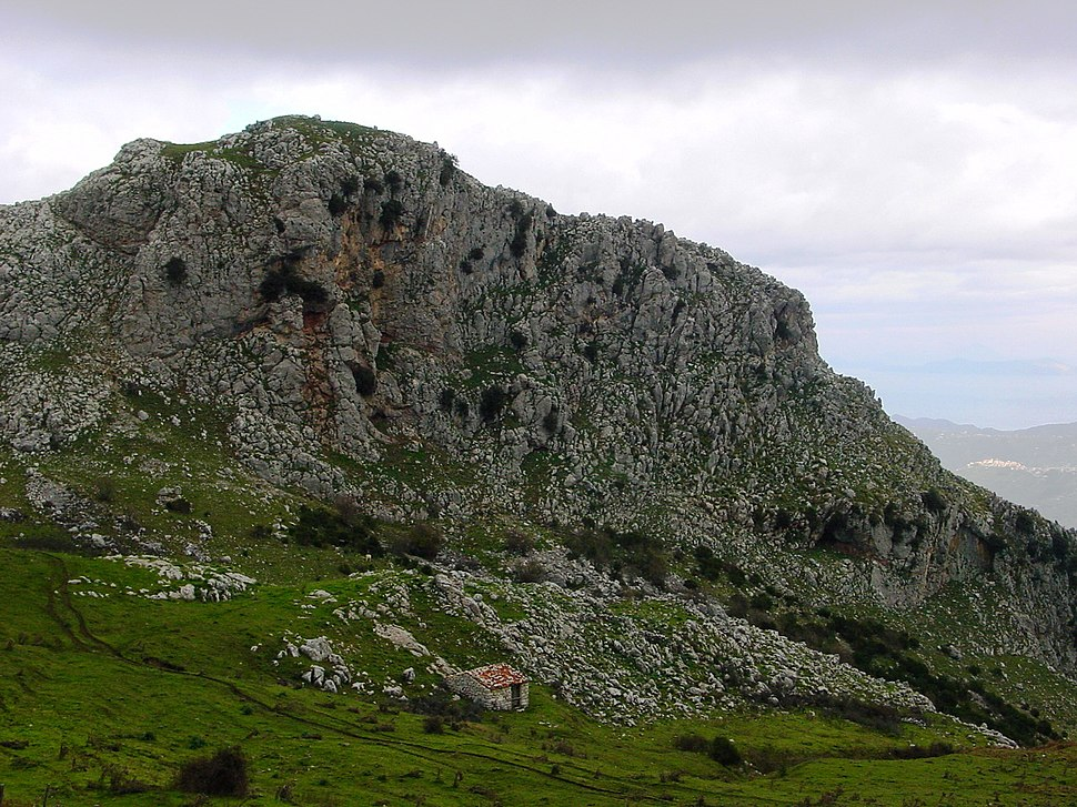 Parco Dei Nebrodi Howling Pixel