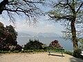 Parco della Villa Pallavicino - Stresa - DSC03033.JPG