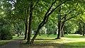 Park w Wojniczu (fot. 2).jpg