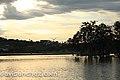 Parque Barigui (8311190015).jpg