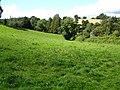 Pasture near Cwm Golau - geograph.org.uk - 628723.jpg