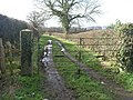 Path and Gate - geograph.org.uk - 351758.jpg