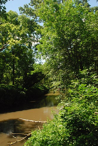 Pecatonica River - The Pectaonica River in the Pecatonica River Woods State Natural Area in Iowa County, Wisconsin