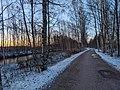 Pedestrian & cycling path parallel to Säynäslahdentie.jpg