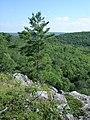Penokee Bluff - panoramio (1).jpg