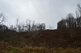 Perry Township wooded scene with power lines.jpg
