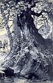 Peter Schnorr In den Schluchten des Balkan Illustration 148.jpg