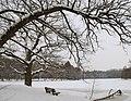 Pfaffensee im Winter.jpg
