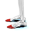 Phalanges of the foot02a lateral view.png