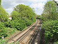 Piccadilly Line near North Ealing - geograph.org.uk - 1842316.jpg