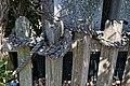 Picket fence hemp rope at Riverside Moorings, Shoreham, West Sussex, England.jpg