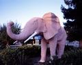 Pink elephant at the Diamond Inn, an older motor court-style motel in Las Vegas, Nevada LCCN2011631866.tif
