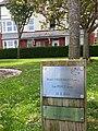 Plac coeden heddwch Maes y Frenhines, Aberystwyth.jpg