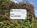 Plaque Allée Glycines - Villiers-sur-Marne (FR94) - 2021-05-07 - 2.jpg