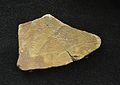 Plaqueta amb gravat de cérvola, cova del Parpalló, Solutrià mitjà.JPG
